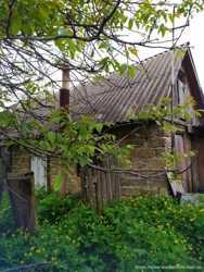 Продам дом с участком. С. Сухолесы. Киевская область 2