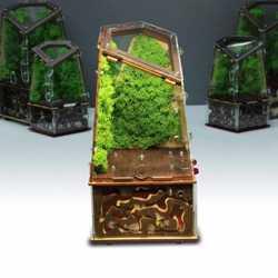 Вертикальная муравьиная ферма Flora Plus полный комплект 3