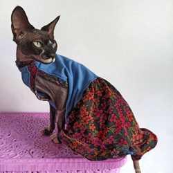 Одежда жилетка комбинезон для кошек сфинкса.
