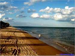 Участок на берегу моря г.Бердянска