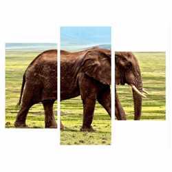 Модульная картина Слон (модульная)