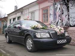 Авто на свадьбу и VIP перевозки