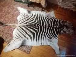 Продам шкуру зебры с ЮАР