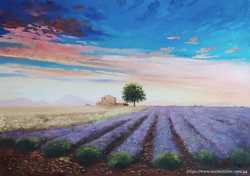 """картина маслом """"Лавандовое поле"""""""