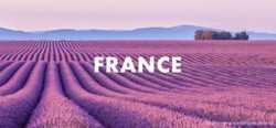 Французский язык для детей и взрослых 1