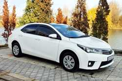 170 Toyota Corolla аренда авто 1