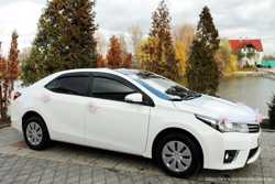170 Toyota Corolla аренда авто 2