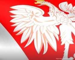 Термінові польські робочі запрошення. 5-7 днів