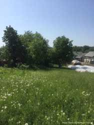 Продам земельну ділянку і будинок в с. Воля Гамулецька, Жовківського району