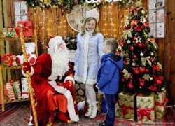 Дед Мороз и Снегурочка Сумы для детей и на корпоративы заказать по лучшей цене 1