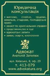 Адвокат по уголовным делам (Житомир,Киев) 2