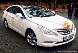165 Hyundai Sonata белая 2013 аренда авто 3